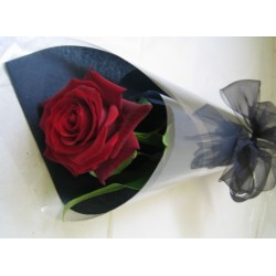A Single Red  Rose in cellophane