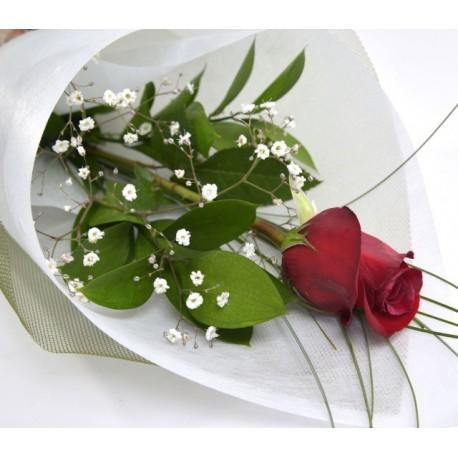 Jo Eunha Single-red-rose