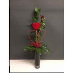 Single Red Rose in a vase