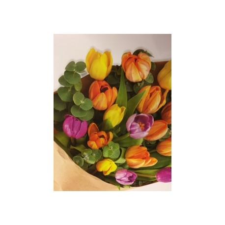 Tulips Handtied